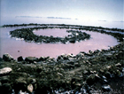 Rumores en torno a Spiral Jetty